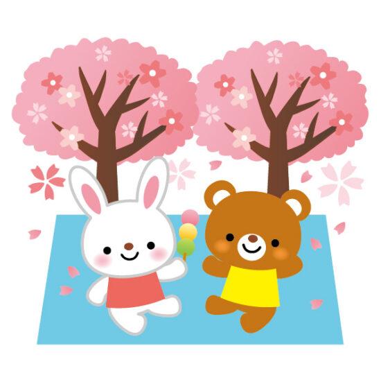 京都の桜の開花、2015年情報。桜の見頃はいつ頃なのか?