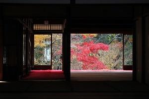 京都の紅葉 シーズン中の混雑は平日も関係ないけど、穴場スポットを狙ってできるだけゆったり見たい